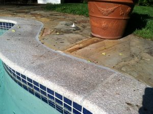 New Tile and Coping with Bullnose Granite Coping